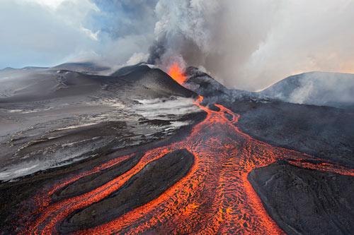 Bằng chứng sự sống hồi phục cực nhanh sau thời kỳ đại tuyệt chủng - Ảnh 2.