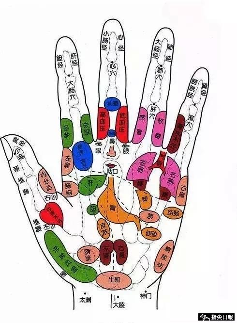 Nắm chặt tay trong 30 giây: Cách tự khám và khắc phục bệnh nội tạng tuyệt vời của Đông y - Ảnh 8.