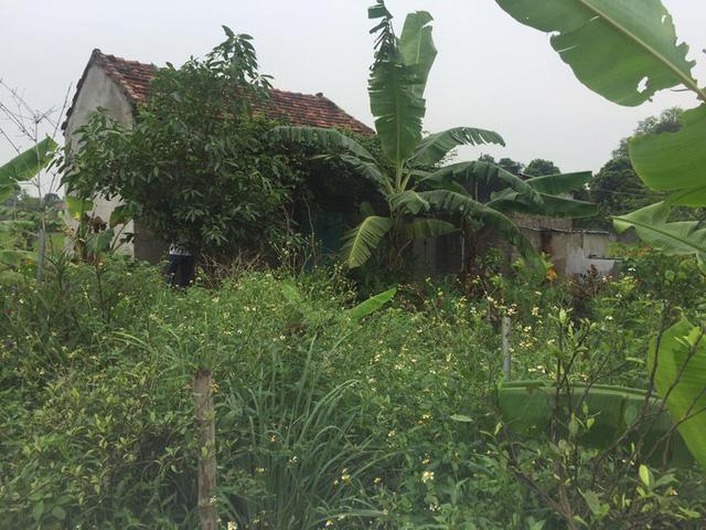 Cận cảnh căn nhà nơi xảy ra vụ giết người rạch bụng kinh hoàng - Ảnh 2.
