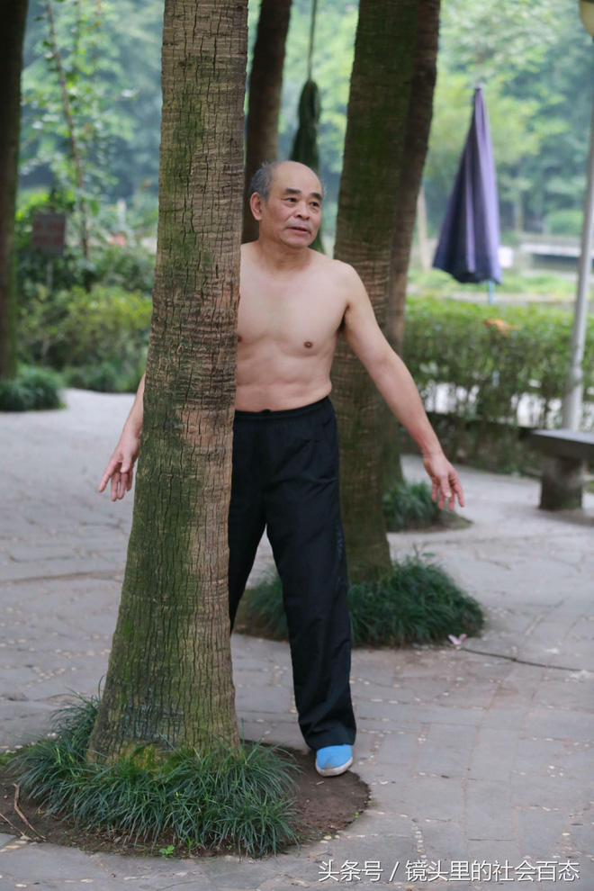 Chữa bệnh bằng cây xanh: Một trào lưu dưỡng sinh mới đang nở rộ ở Trung Quốc - Ảnh 2.