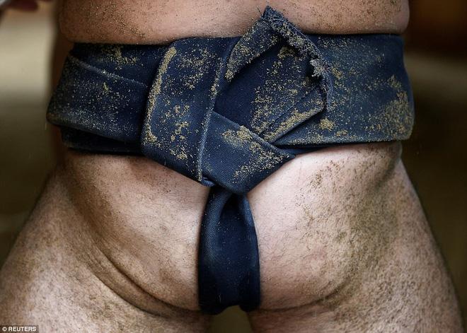 Vén màn cuộc sống của các đấu sĩ sumo tinh nhuệ tại Nhật Bản: Nạp 8.000 calo/ngày, phải thở bằng máy oxy khi ngủ - Ảnh 3.
