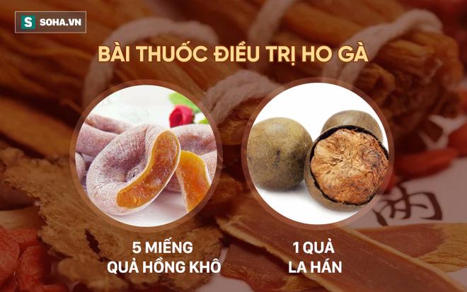 5 bài thuốc chữa bệnh quý nhất từ loại trái cây bình dân có nhiều ở Việt Nam - Ảnh 4.