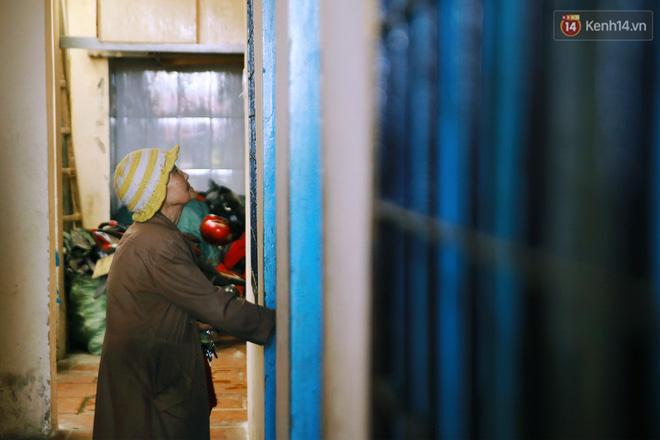 Hồng nhan thời trẻ nhưng về già chẳng chồng con, cụ bà 83 tuổi bầu bạn với thú hoang nơi phố núi Đà Lạt - Ảnh 22.