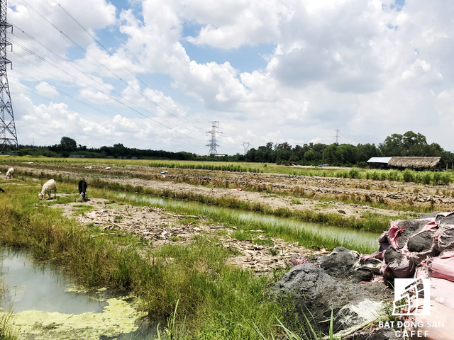 Cận cảnh Happyland – siêu dự án 2 tỷ USD hoang vu tại Long An  - Ảnh 23.