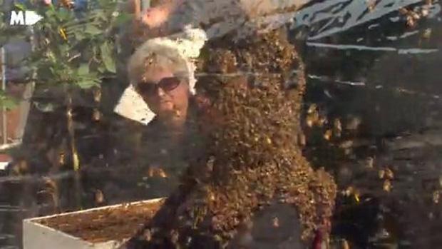 Người đàn ông để cho 100 nghìn con ong bâu kín mặt mà vẫn không sao - Ảnh 5.