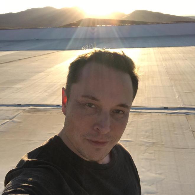 Elon Musk chia sẻ video về ngựa hoang vẫn sống ngay bên cạnh nhà máy khổng lồ Gigafactory - Ảnh 3.