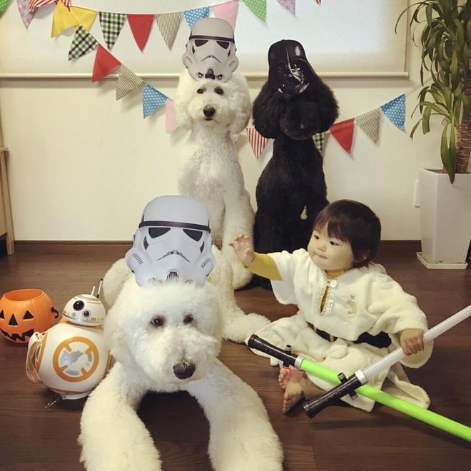 Loạt ảnh hóa trang Halloween hoành tráng nhất mạng xã hội của bé gái Nhật và những người bạn thú cưng - Ảnh 4.