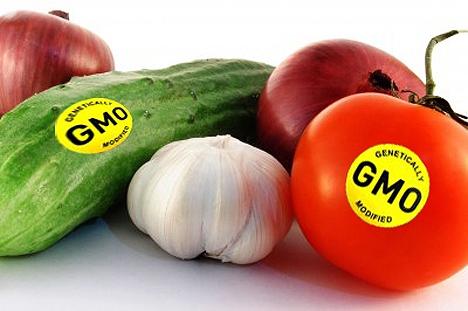Thực phẩm biến đổi gen - Nên hay không nên ăn? - Ảnh 2.