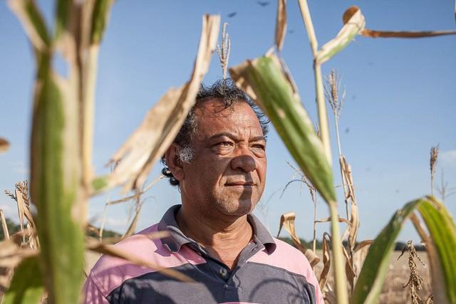 Những cánh đồng hoang hóa tiêu điều vì khủng hoảng kinh tế ở Venezuela  - Ảnh 4.