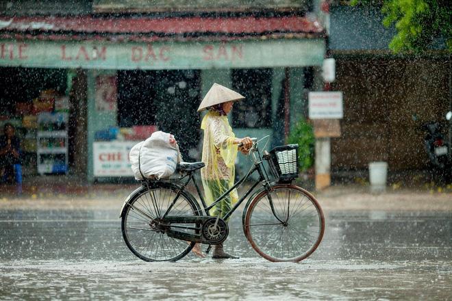 Những bức ảnh tuyệt đẹp này sẽ khiến bạn nhận ra, trong mưa, cuộc đời vẫn dịu dàng đến thế - Ảnh 5.