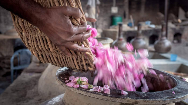 Kinh đô nước hoa của Ấn Độ, nơi cất giữ linh hồn của những mùi hương và cuộc chiến với ngành nước hoa công nghiệp - Ảnh 5.