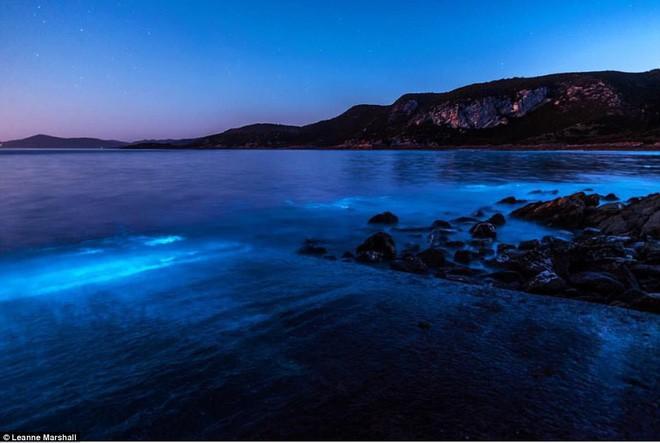 Kỳ diệu vùng nước biển cứ chạm vào là phát ra ánh sáng màu xanh lam - Ảnh 5.