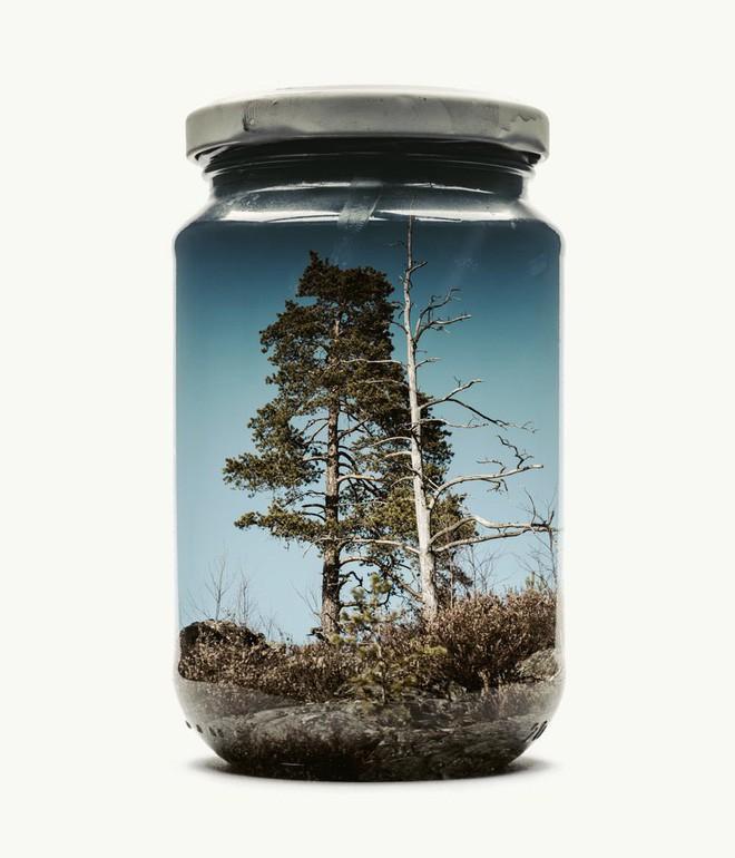 Chiêm ngưỡng bộ ảnh Gom cả thế gian vào lọ thủy tinh của nhiếp ảnh gia Christoffer Relander - Ảnh 5.