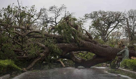 Siêu bão Irma cày nát phía Bắc Cuba, nhăm nhe tấn công Florida  - Ảnh 5.