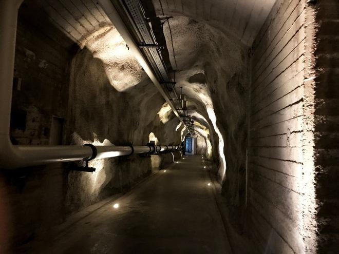 Ghé thăm căn hầm bí mật trên đỉnh núi tại Thụy Sĩ, nơi các triệu phú cất giấu tiền ảo bitcoin - Ảnh 6.