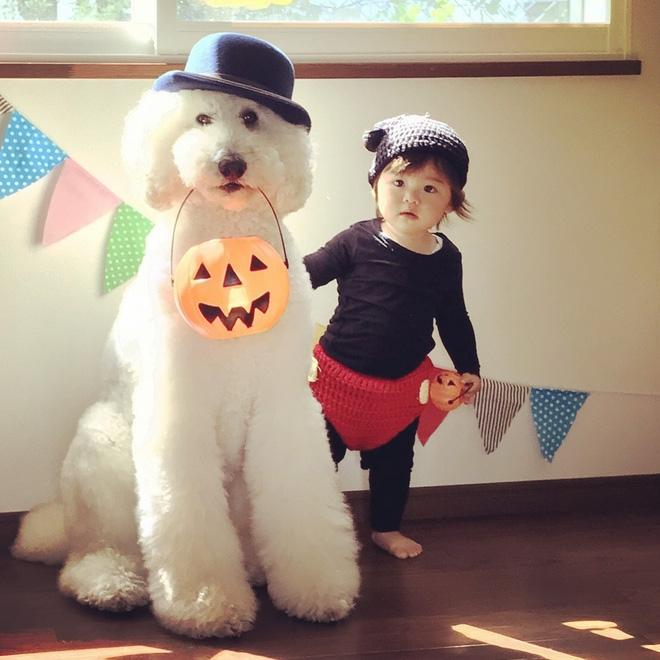 Loạt ảnh hóa trang Halloween hoành tráng nhất mạng xã hội của bé gái Nhật và những người bạn thú cưng - Ảnh 6.