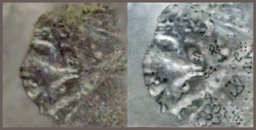 Phát hiện bằng chứng nền văn minh cổ đại từng xuất hiện tại Nam Cực - Ảnh 6.