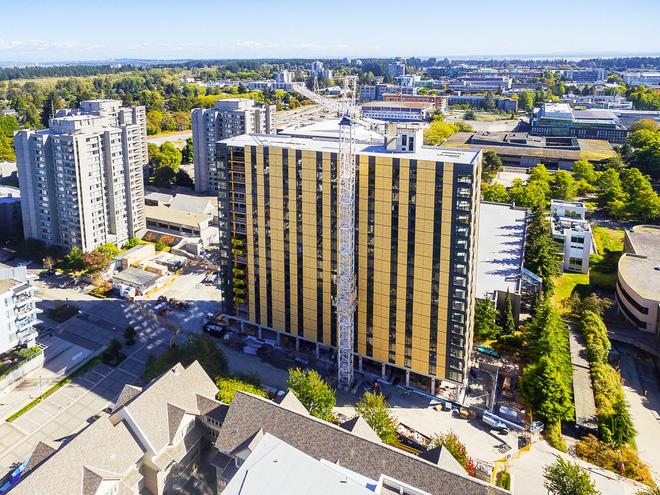 Không phải bê tông hay sắt thép, các tòa nhà chọc trời trong tương lai sẽ được xây dựng hoàn toàn từ... gỗ - Ảnh 5.