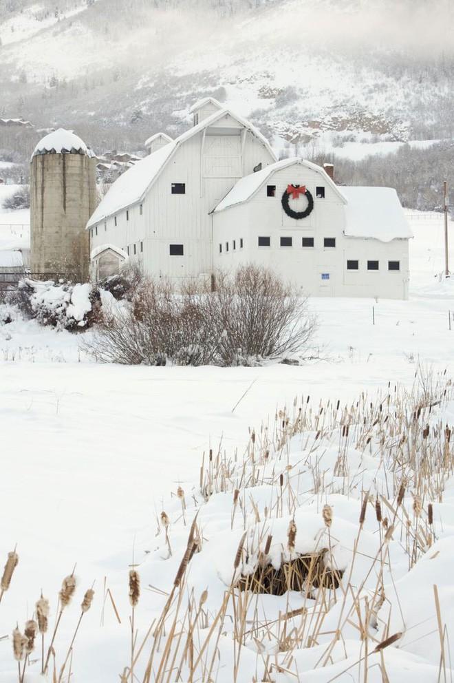 Những ngôi nhà trang hoàng lộng lẫy đón Noel đẹp đến mê mẩn giữa tuyết trắng - Ảnh 7.