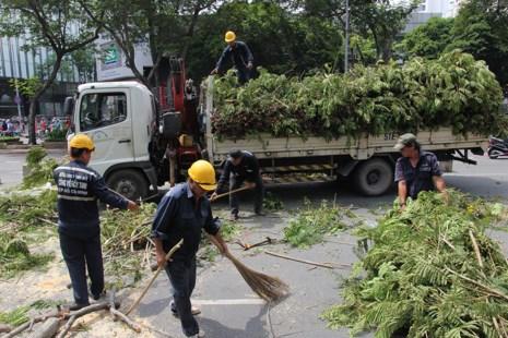 Bắt đầu đốn hạ hàng cây xanh trên đường Lê Lợi - Ảnh 7.