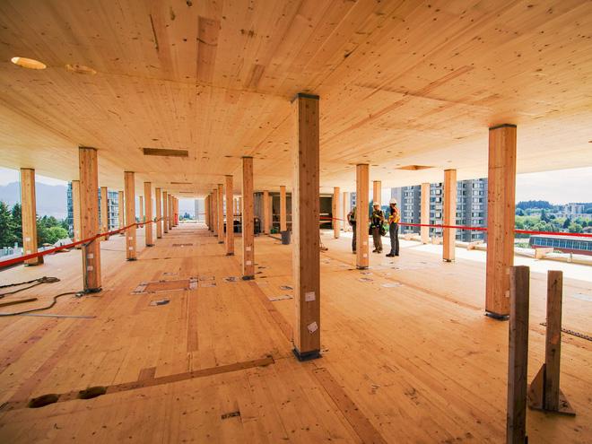 Không phải bê tông hay sắt thép, các tòa nhà chọc trời trong tương lai sẽ được xây dựng hoàn toàn từ... gỗ - Ảnh 6.
