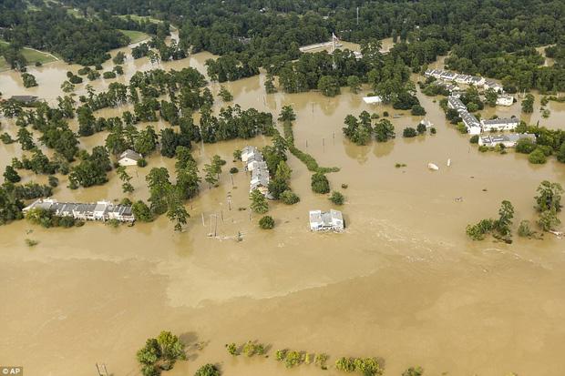 38 người chết và 48.700 ngôi nhà bị phá hủy sau cơn bão Harvey: Đây có thể chưa phải là thống kê thiệt hại cuối cùng - Ảnh 8.