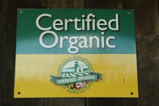 Bài 4: Trang trại cộng đồng giúp người Mỹ giải bài toán thực phẩm sạch - Ảnh 11.