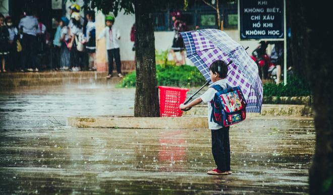 Những bức ảnh tuyệt đẹp này sẽ khiến bạn nhận ra, trong mưa, cuộc đời vẫn dịu dàng đến thế - Ảnh 10.