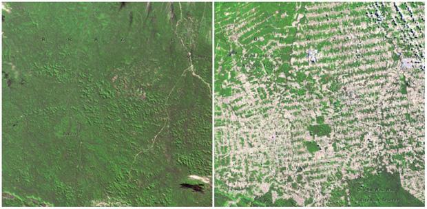 Lục lọi kho ảnh của NASA để thấy Trái đất đã thay đổi khủng khiếp đến thế nào - Ảnh 11.