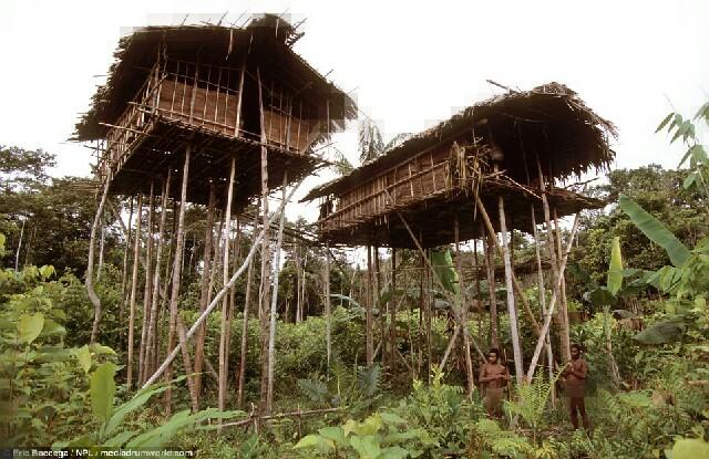 Cận cảnh bộ lạc sống trên cây, cao tới 50m và tách biệt với loài người ngay tại Đông Nam Á - Ảnh 1.