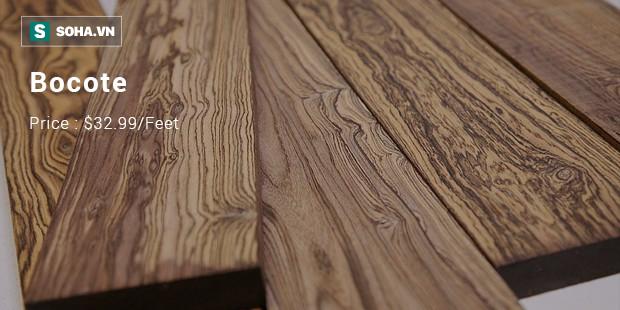 Từ cây gỗ 1 triệu USD không bán ở Thanh Hóa: 10 loại gỗ đắt xắt ra miếng bạn biết chưa? - Ảnh 1.