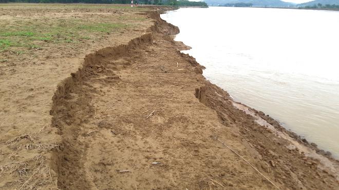 Video: Hàng trăm nghìn mét đất bị sông Lam nuốt chửng từng ngày - Ảnh 9.