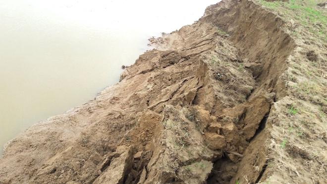 Video: Hàng trăm nghìn mét đất bị sông Lam nuốt chửng từng ngày - Ảnh 7.