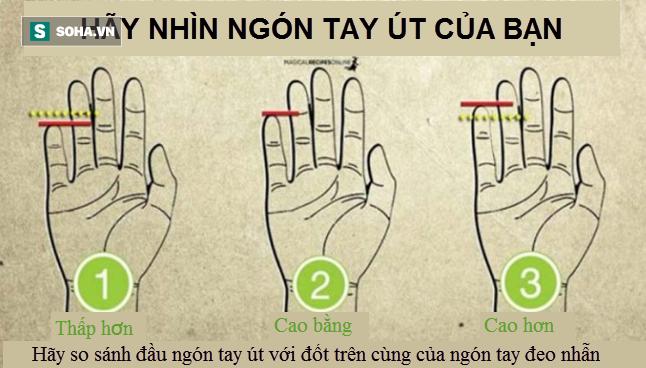 Chiều dài ngón tay út có thể tiết lộ điều gì về con người bạn? - Ảnh 1.
