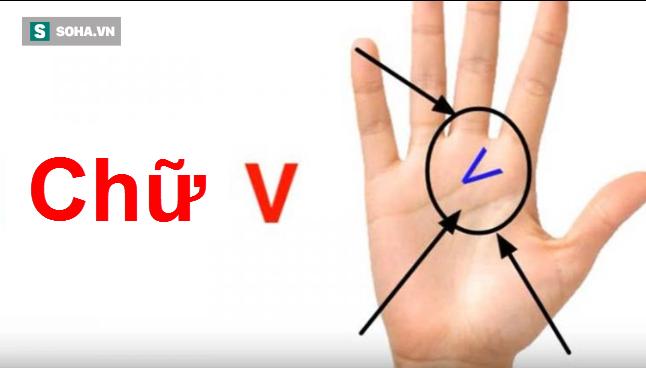Bạn tìm xem trong lòng bàn tay có hình chữ V không, nó có ý nghĩa gì? - Ảnh 1.