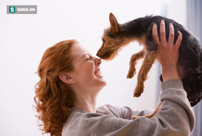 Con đường lây nhiễm giun sán từ chó mèo tới người rất gần: Chuyên gia chỉ cách phòng tránh - Ảnh 1.