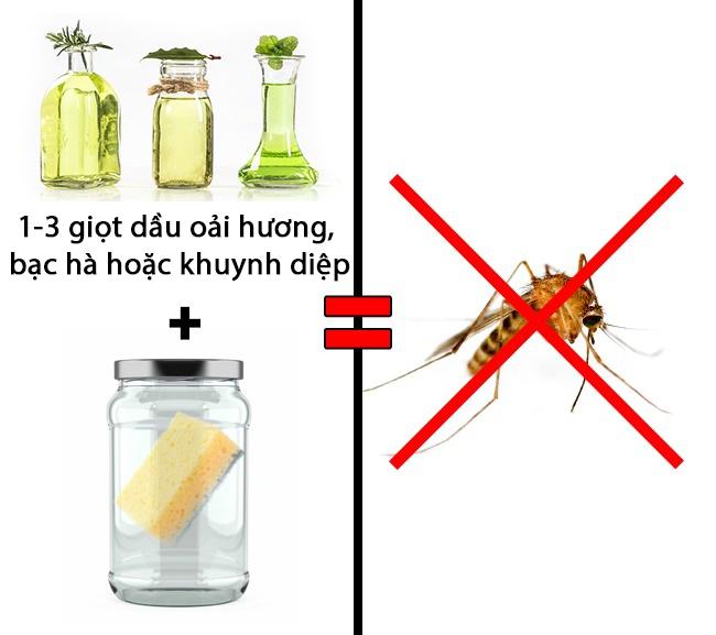 Mách bạn 3 mẹo an toàn giúp bạn trừ khử mấy con côn trùng đáng ghét - Ảnh 3.