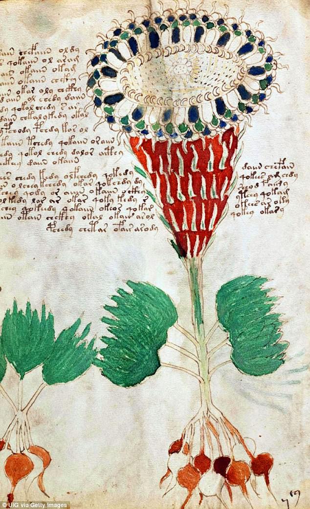 Cuốn sách 600 năm tuổi bí ẩn nhất thế giới sắp được giải mã nhờ thế lực mới - Ảnh 5.