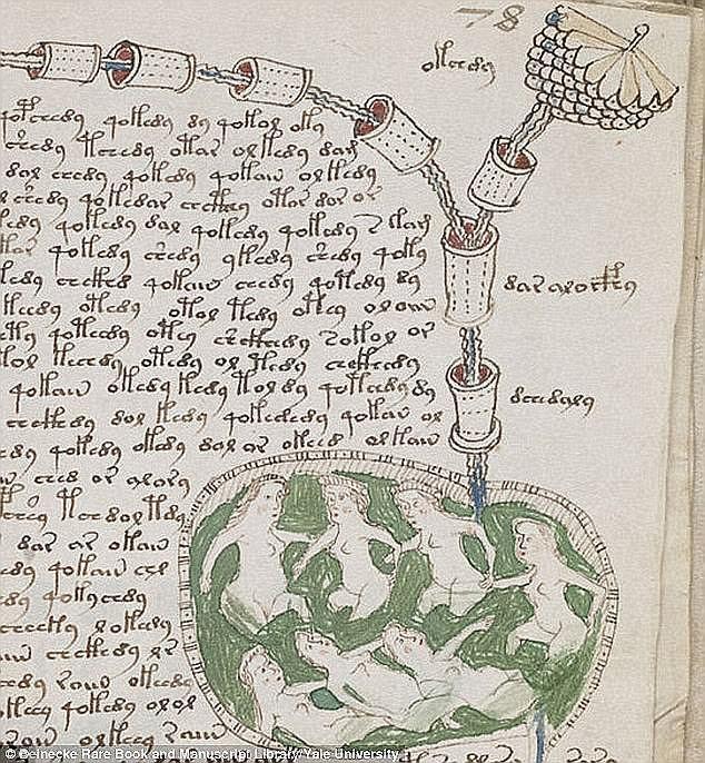 Cuốn sách 600 năm tuổi bí ẩn nhất thế giới sắp được giải mã nhờ thế lực mới - Ảnh 6.