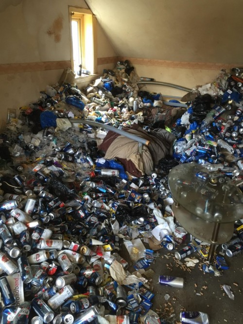 Cho thuê nhà 12 năm, chủ nhà khóc thét khi thấy căn phòng tan hoang như bãi rác - Ảnh 1.
