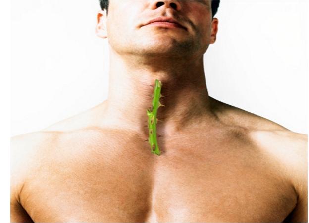 6 thực phẩm dân gian làm dịu viêm họng - Ảnh 1.