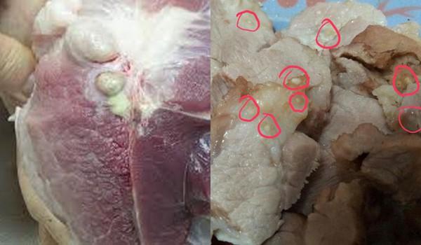 Thấy thịt lợn có 7 dấu hiệu này, tuyệt đối không nên mua kẻo mất tiền mua bệnh vào người - Ảnh 2.