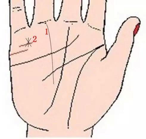 Lòng bàn tay có 8 vị trí phú quý, chỉ cần sở hữu ít nhất 1 cái thì cả đời ăn sung mặc sướng - Ảnh 1.