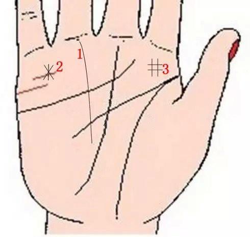 Lòng bàn tay có 8 vị trí phú quý, chỉ cần sở hữu ít nhất 1 cái thì cả đời ăn sung mặc sướng - Ảnh 2.