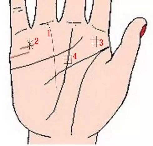 Lòng bàn tay có 8 vị trí phú quý, chỉ cần sở hữu ít nhất 1 cái thì cả đời ăn sung mặc sướng - Ảnh 3.