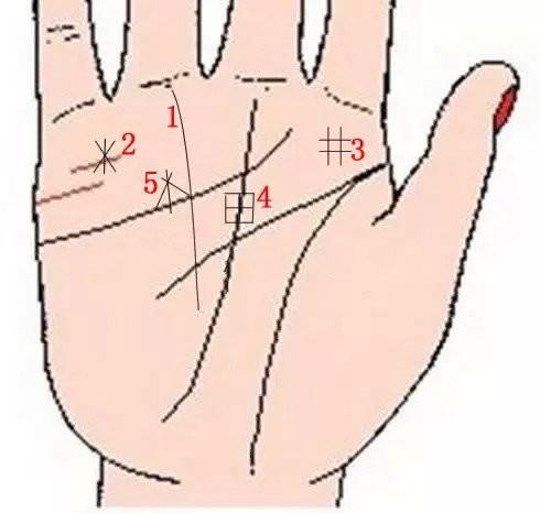 Lòng bàn tay có 8 vị trí phú quý, chỉ cần sở hữu ít nhất 1 cái thì cả đời ăn sung mặc sướng - Ảnh 4.