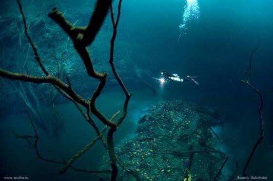 Những thứ kì lạ đến không tưởng mà người ta tìm thấy dưới đáy đại dương - Ảnh 5.