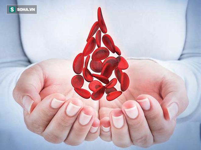 Không cần thực phẩm chức năng, chỉ áp dụng những điều này, máu trong cơ thể ắt tự sạch - Ảnh 1.