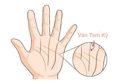 Ai là quý phu nhân hay nữ đại gia đều có tướng tay và vân tay như thế này, hãy thử mở lòng bàn tay xem, bạn sẽ thấy ngay - Ảnh 1.