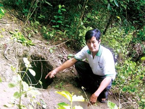 Những huyền thoại rắn khổng lồ ở Việt Nam - Ảnh 3.
